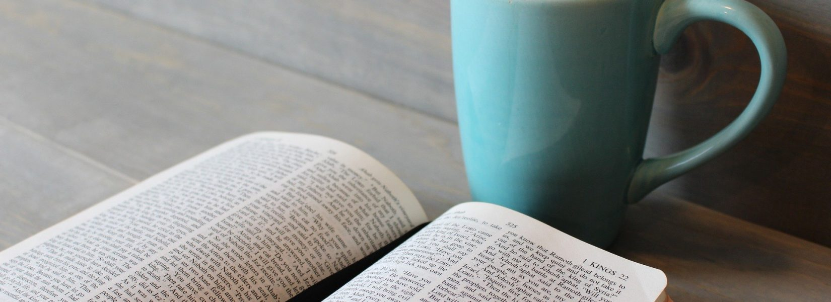 5 Best Study Bibles for Women to Inspire and Grow in 2021