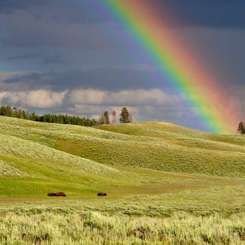 God's Rainbow Promise – Bible Study for Kids