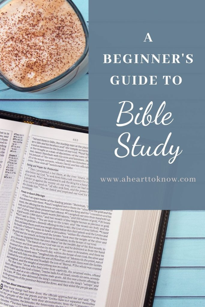 A Beginner's Guide to Bible Study